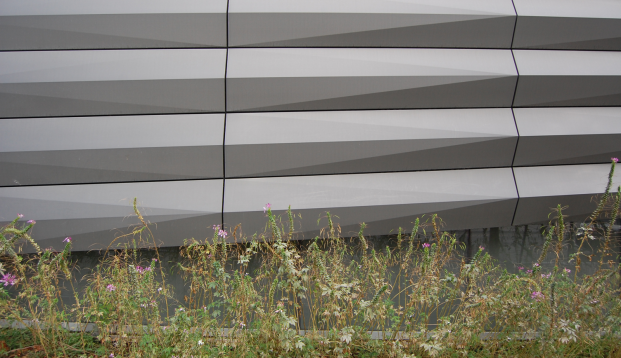 Enchanted by the combination of the highly engineered facade and the meadow landscape at the Granoff Center.
